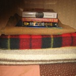 Days 48-54 poison ivy-blankets-books