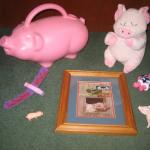 Days 365+78 Pig paraphalia cropped